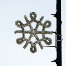 Six-pointed snowflake with six swoops alternating